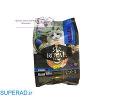 خرید غذای بچه گربه رویال فید