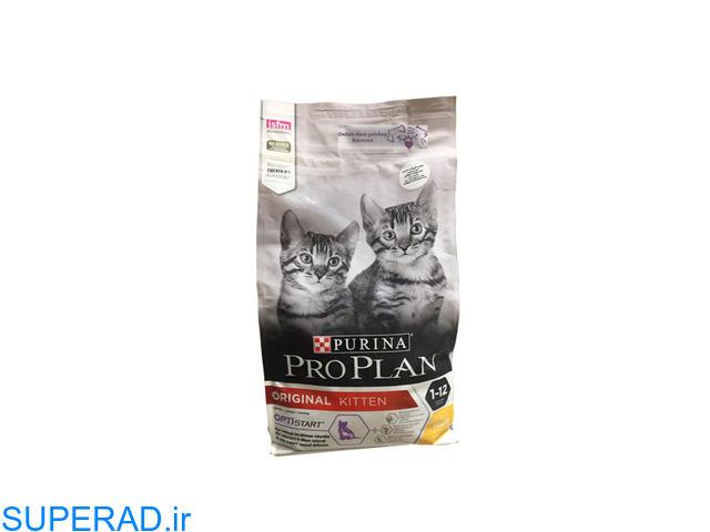 خرید غذای بچه گربه ارزان