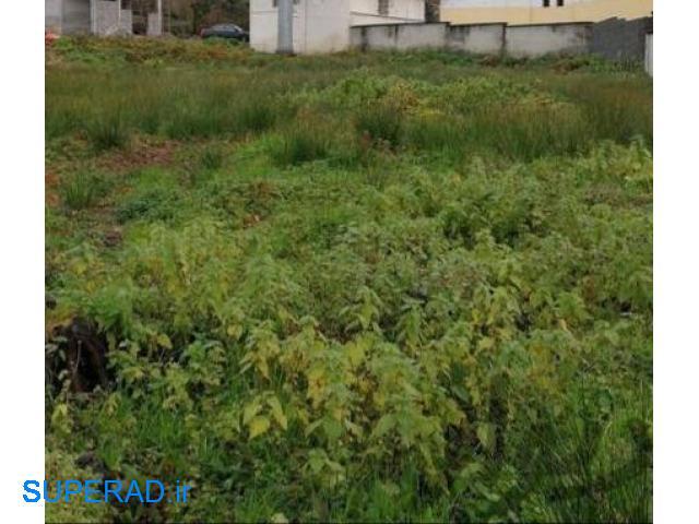 کد ۱۰۵۷: زمین تجاری مسکونی در سوستان لاهیجان