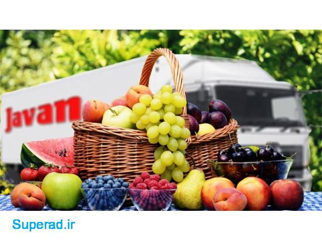 شرکت حمل میوه و تره بار به اروپا و ترکیه